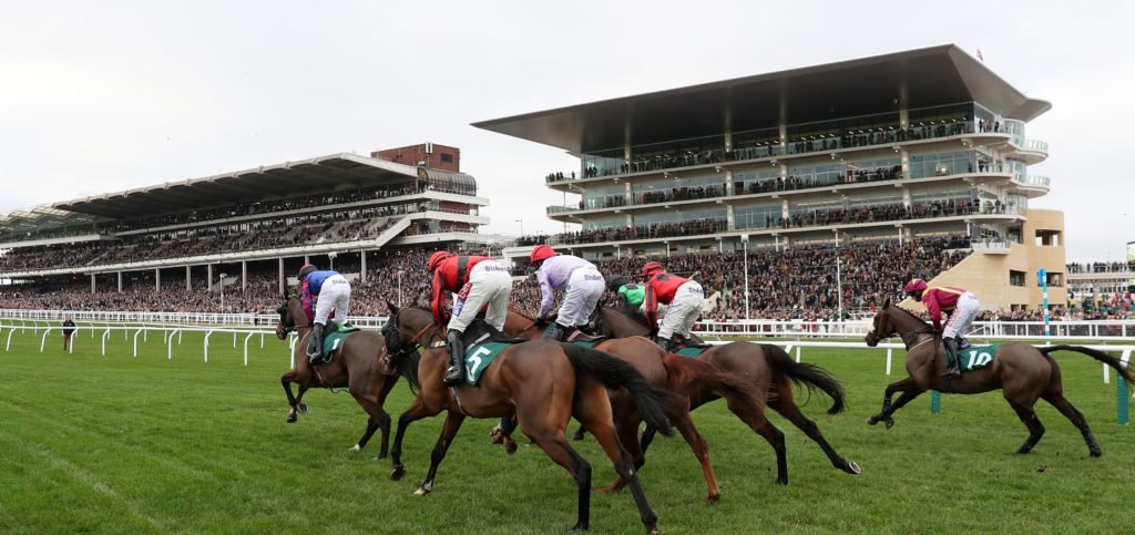 RedsBet Daily Horse Racing Pointers