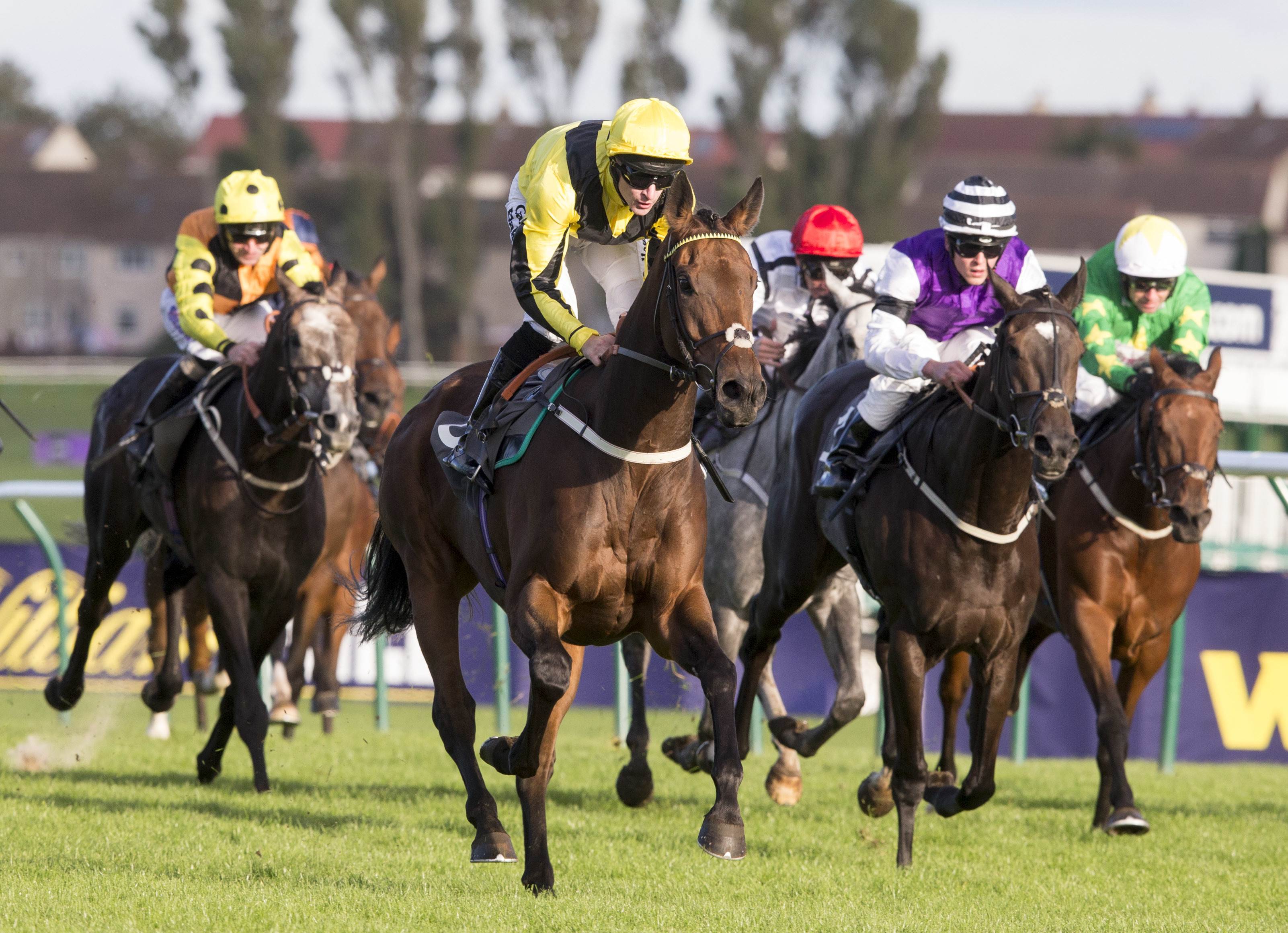 Horse Racing Betting Tips: Friday at Ayr