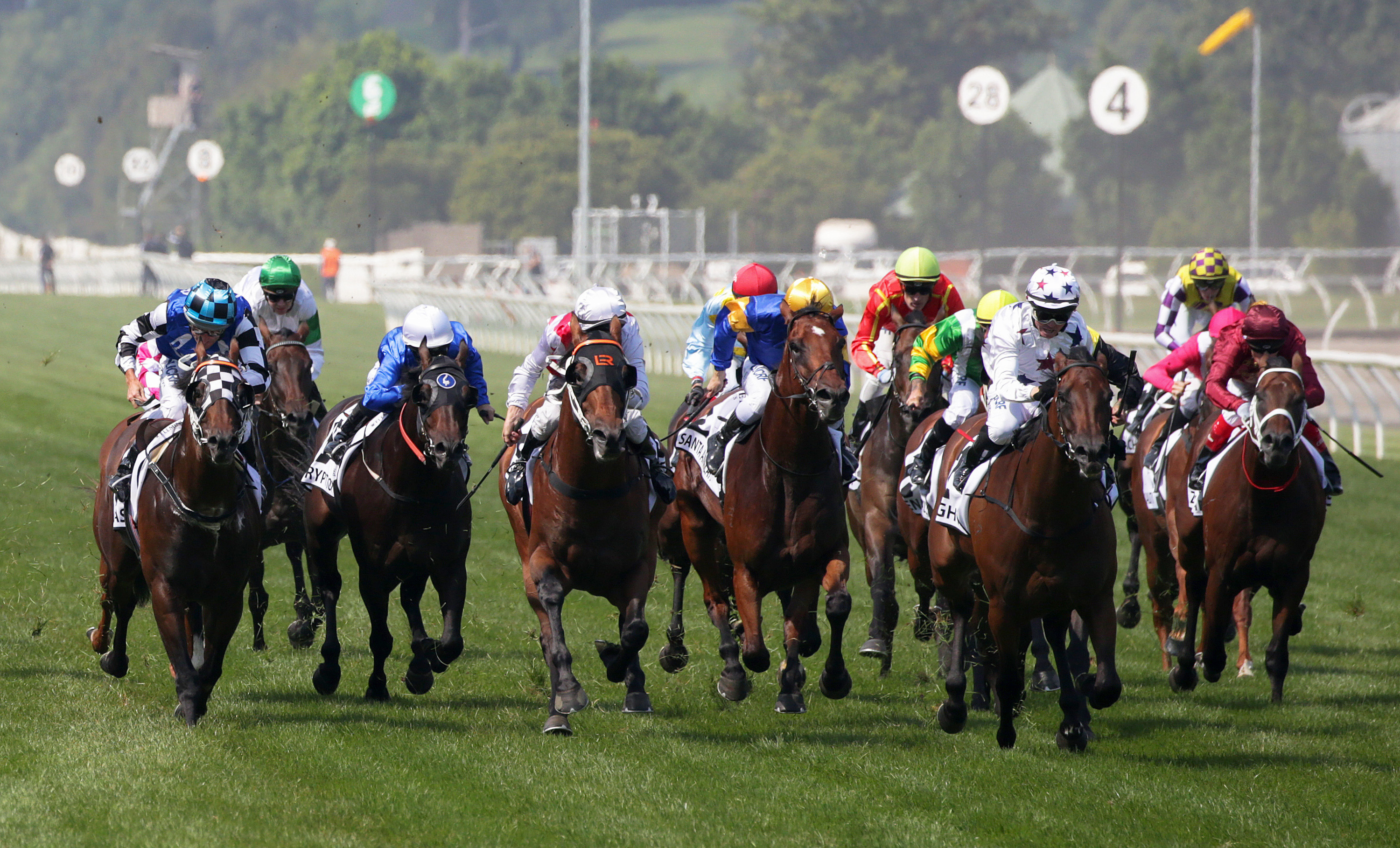 Horse Racing Betting Tips: Wednesday at Cartmel